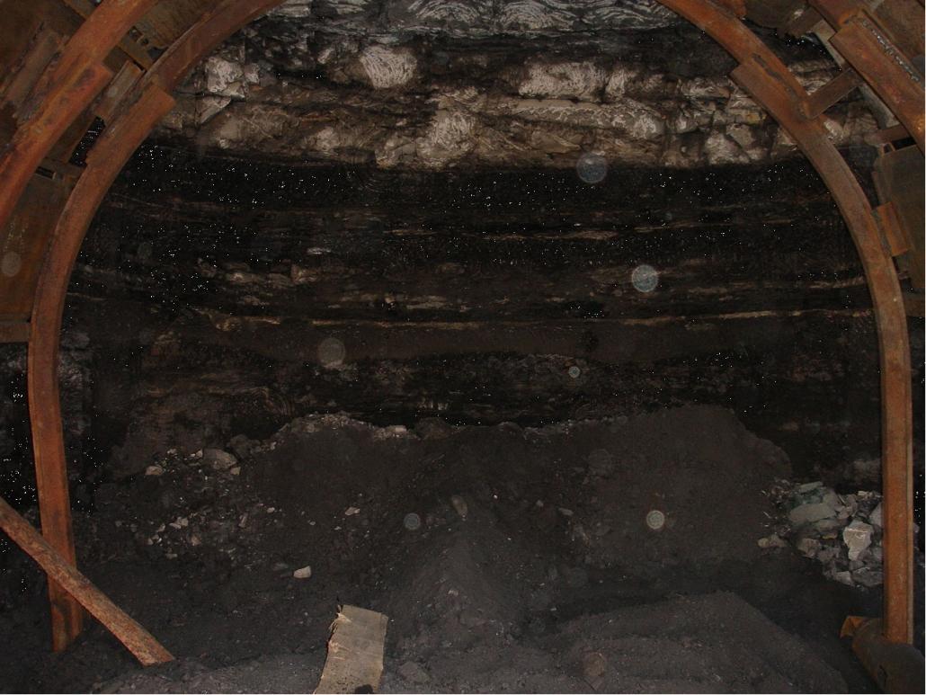 Нетрадиционные источники энергии (метан угольных пластов, угленосные отложения как нефтегазоматеринские породы, горючие сланцы)