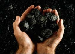 Региональное направление (изучение угольных бассейнов)