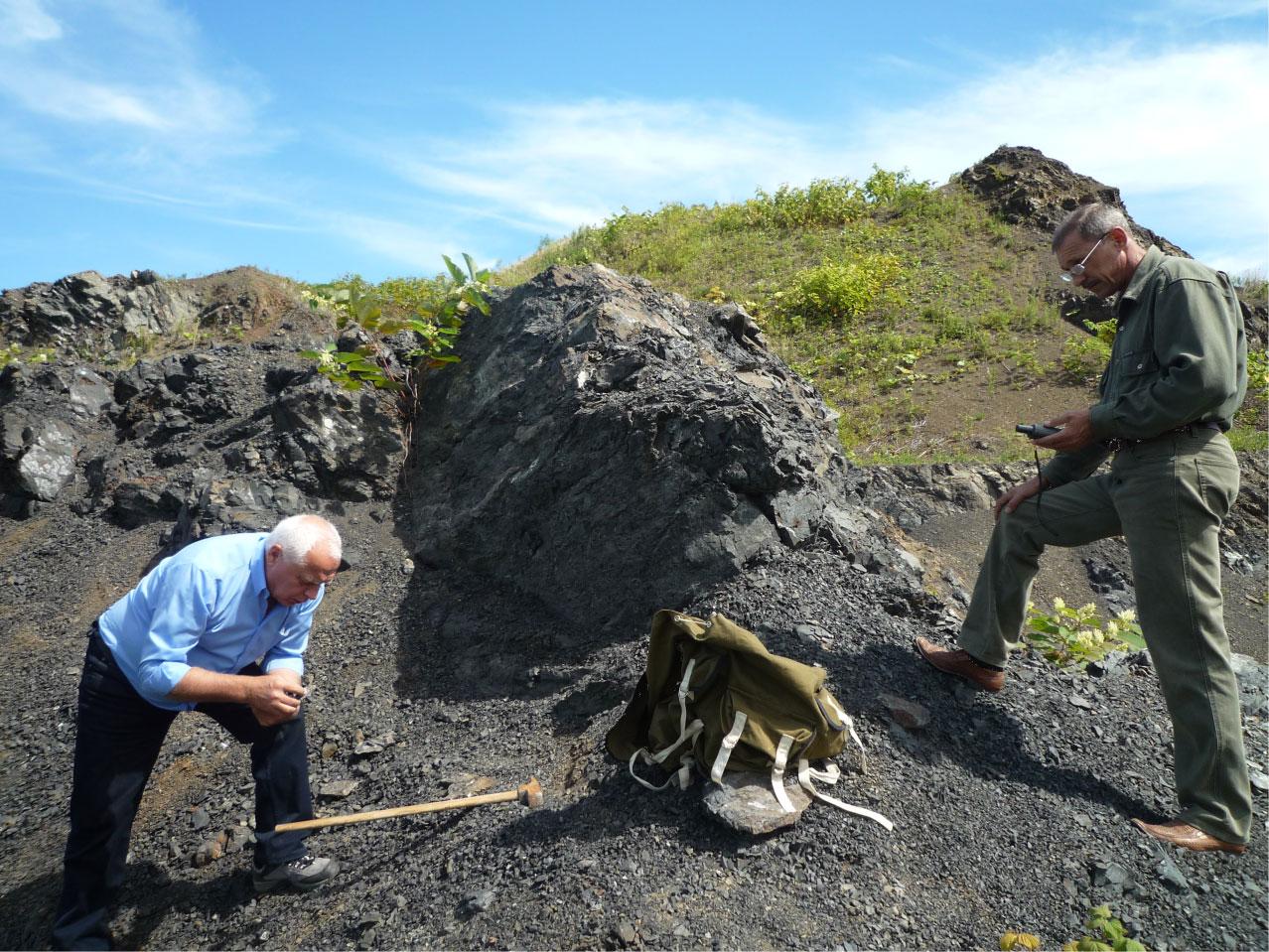 Геохимические исследования углей (изучение редких элементов в углях)